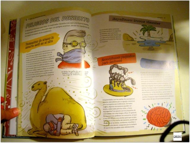 libros mayores interior 1