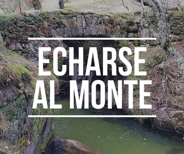 echarseal monte